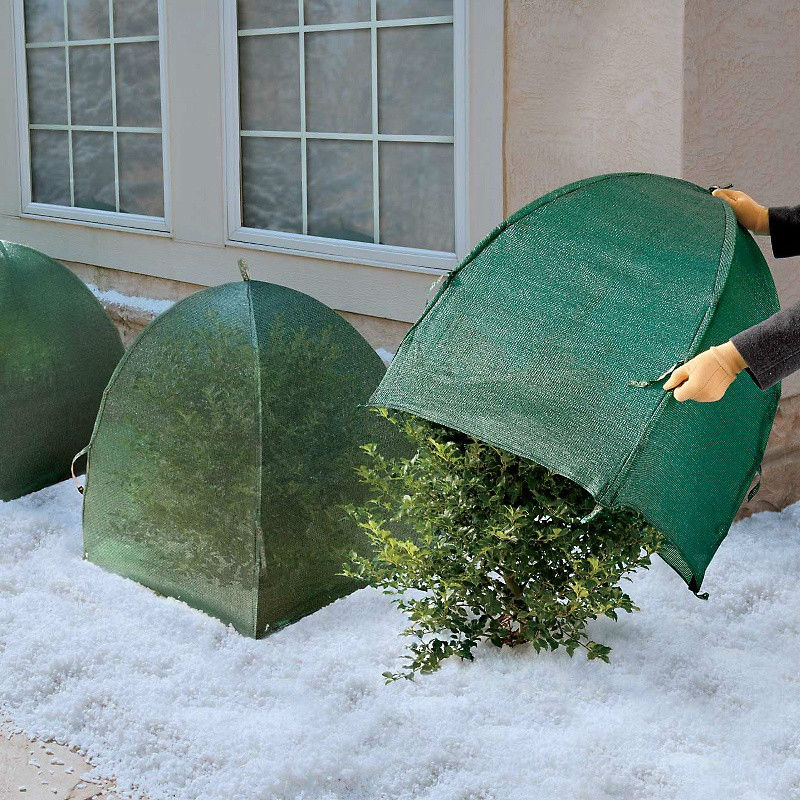HDPE-virgin-plastic-garden-winter-small-grow.jpg